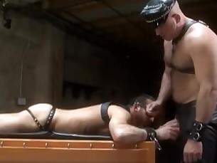 muscle,bear,leather,fisting,daddy